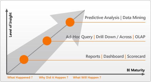 Master Data Analytics: BI Maturity